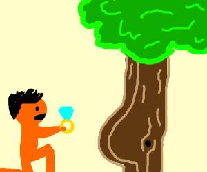 orange man proposes to thiqq tree