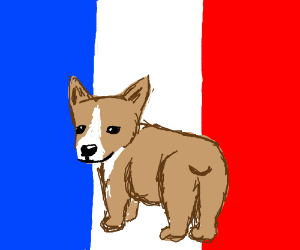 French flag with a but on