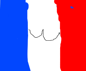 French flag but white stripe is also a butt