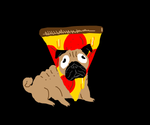 Pizza + Pug