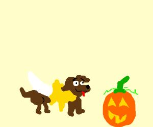 A weenier dog wearing a banana costume