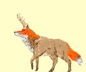 Fox Deer