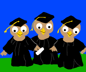 Bird Graduates