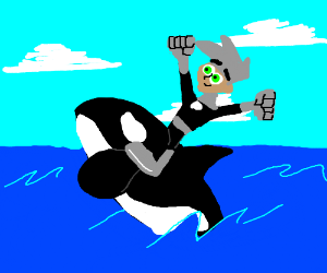 Danny Phantom rides a killer whale.