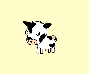 Super cute cow