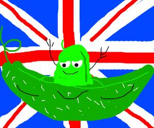 BRITISH SOY BEAN!