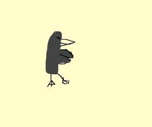 A smug black duck