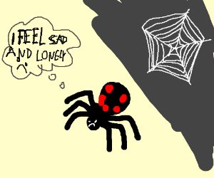 Sad and lonely black widow