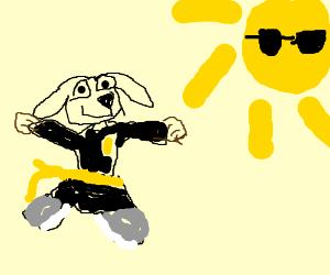 Ninja steal a dog. The Sun is cool.