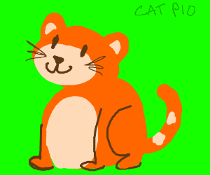 Cat PIO