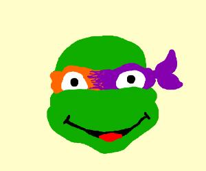 Orange and purple ninja turtle hybrid