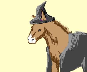 Mule wizard