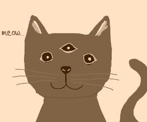 3 eyed cat