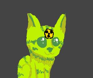 Radioactive Kitten