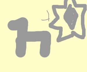 donkey gains psychic powers