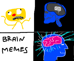 Image result for ct brain memes