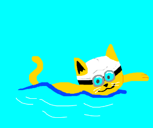 a happy cat is swimming