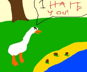 Duck hates snails