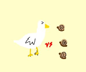 goose vs snails