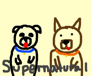Supernatural, but pupper's?