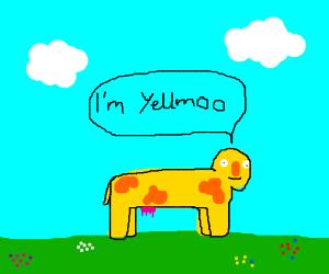 Yellmoo (Yellmo Cow)