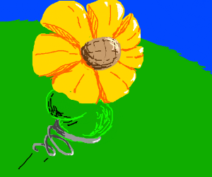 Flower bouncing off a spring pio