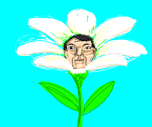 Man in a flower costume.