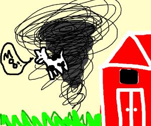 A Tornado On a Farm