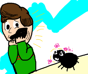 Man scared of friendly spider.