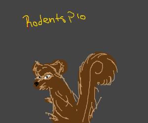 Cute Rodents P.I.O.!