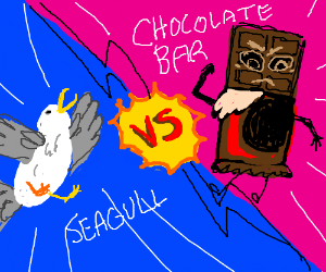 Seagull fighting a mean chocolat bar