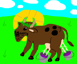 Jesus cow has brought the holy malk