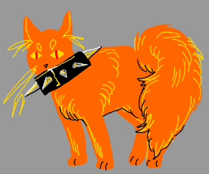 Orange cat with fluffy tail and spiked collar