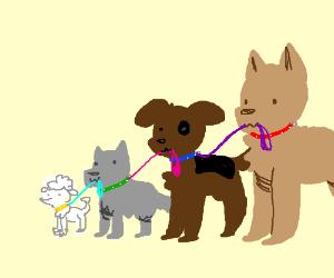 Dogception!