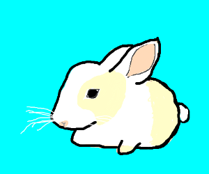 Oh look it's a cute little bunnie!