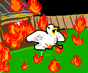 chicken escaping a burning house