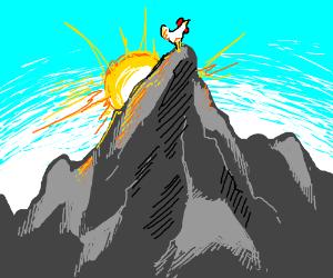 A mountain chicken