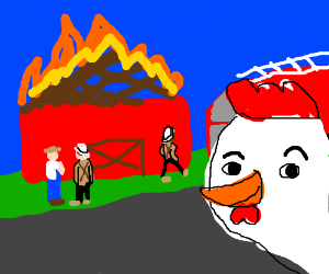 rooster burns down a thing