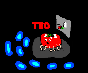 Ted Tomato with many legs