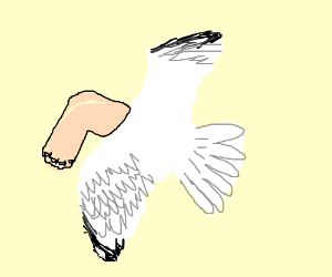 A bird with a foot for a head