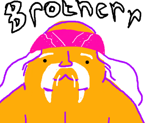 Hulk Hogan the walrus