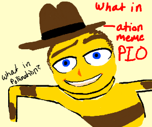 What in -----ation meme pio