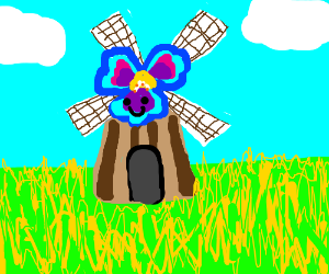 pansy faced windmill