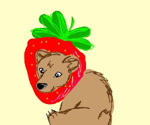 strawbeary get it bear