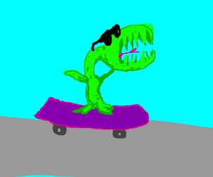 Cool Venus Fly Trap on a Skateboard