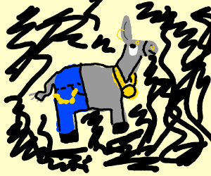 A donkey with bling