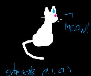 CYBER-CATS P.I.O!