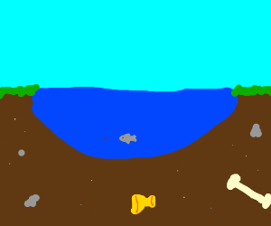 Fish swimming in a pond near the bottom