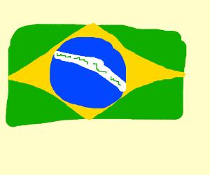 brazilian flag (i think)