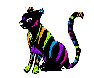 Rainbow stripey cat